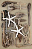 Starfish and Driftwood Abstract Stock Images