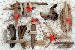Starfish Driftwood and Seashells Royalty Free Stock Image