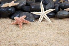 Starfish e rochas fotografia de stock