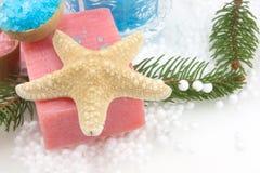 Starfish e sabão imagens de stock royalty free