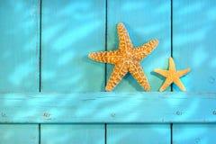 Starfish em uma porta rústica velha Imagem de Stock Royalty Free