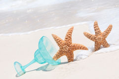 Starfish feeling tipsy Royalty Free Stock Photos