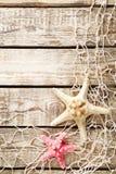 Starfish Royalty Free Stock Photos