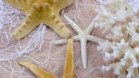 Starfish and Fishnet on Sand stock video