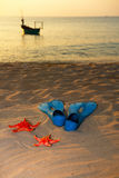 Starfish and flippers on sea  sand sunset Stock Images