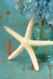 Starfish with flower Stock Photos