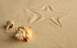 Starfish footprint over caribbean sand. With seashells Royalty Free Stock Photo