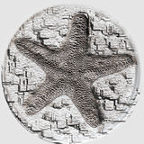 Starfish fossil Royalty Free Stock Photo