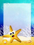 Starfish with frame Stock Images