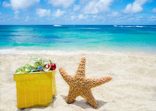 Starfish with gift box on the beach Royalty Free Stock Photo