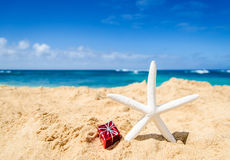 Starfish with gift box on the sandy beach Royalty Free Stock Images