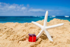 Starfish with gift on the sandy beach Stock Photo