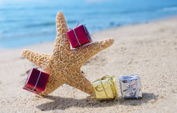 Starfish with Gifts by the ocean Royalty Free Stock Images
