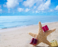 Starfish with Gifts by the ocean Stock Photography