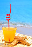 Starfish, glass of orange cocktail against the blue sea Royalty Free Stock Photos