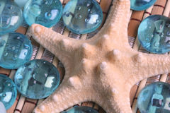 Starfish and glass pebbles Stock Image