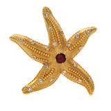 Starfish gold. Starfish from gold with stones Stock Photography