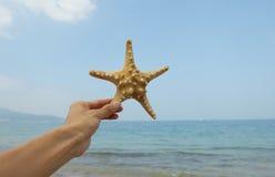 Starfish and hand. On the beach Stock Photo