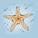 Starfish. Hand drawn  illustration in watercolor style Royalty Free Stock Photo