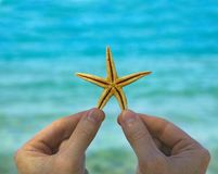 Starfish in hand on sea background Royalty Free Stock Photos