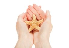 Starfish in the hands Stock Image