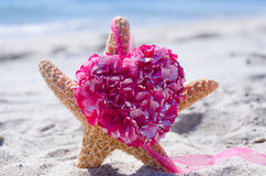 Starfish with heart by the ocean Royalty Free Stock Photos
