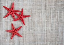 Starfish on hessian Royalty Free Stock Photo