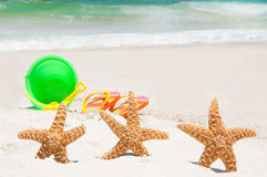 Starfish on holiday. Starfish playing at the beach Stock Image