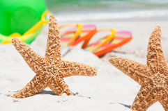 Starfish on holiday Royalty Free Stock Photography