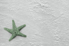Starfish and ice Royalty Free Stock Images