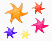 Starfish icon set Royalty Free Stock Photo