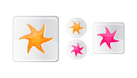 Starfish icon set Royalty Free Stock Image
