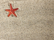 Starfish im Sand Lizenzfreies Stockbild