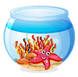 A starfish inside the aquarium. Illustration of a starfish inside the aquarium on a white background Stock Photo
