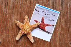 Starfish and an instant photo of a starfish on a wooden surface Royalty Free Stock Photo
