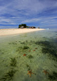 Starfish Island Stock Images