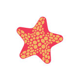 Starfish isolated. Sea animals on white background. aquatic moll. Usk star Royalty Free Stock Photography