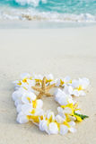 starfish lei пляжа стоковое изображение