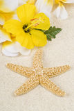 Starfish and Lei on the Beach Stock Photography