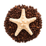 Starfish lie on the circle of coffee beans isolated Stock Photography
