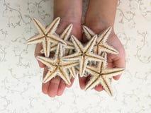 Starfish. Lies on human hands Stock Photo