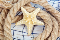 Starfish lies on a rope Royalty Free Stock Photos