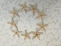 Starfish. Lies on white floor Stock Image