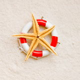 Starfish on life buoy. Starfish on beach situated on life buoy Royalty Free Stock Photos