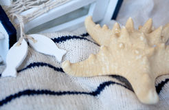Starfish lying. On knitted striped sweater Stock Photos