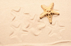 Starfish and marks of starfish on sand Stock Photo