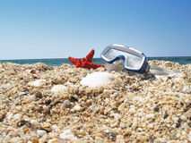 Starfish and mask. Red starfish and mask of diving in the beach Royalty Free Stock Photo