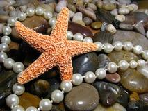 Starfish mit Perlen und Felsen Stockfotos