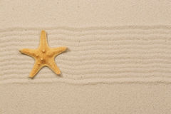 Starfish na areia Foto de Stock Royalty Free