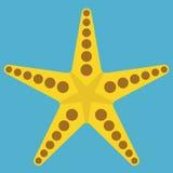 Starfish no azul Fotografia de Stock Royalty Free